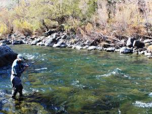streamfishing1sm